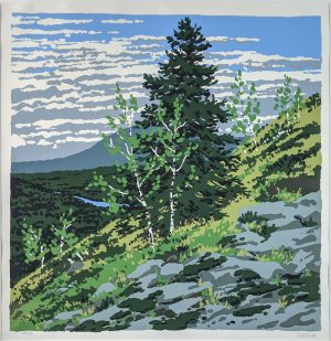 Neil Welliver - Si's Hill