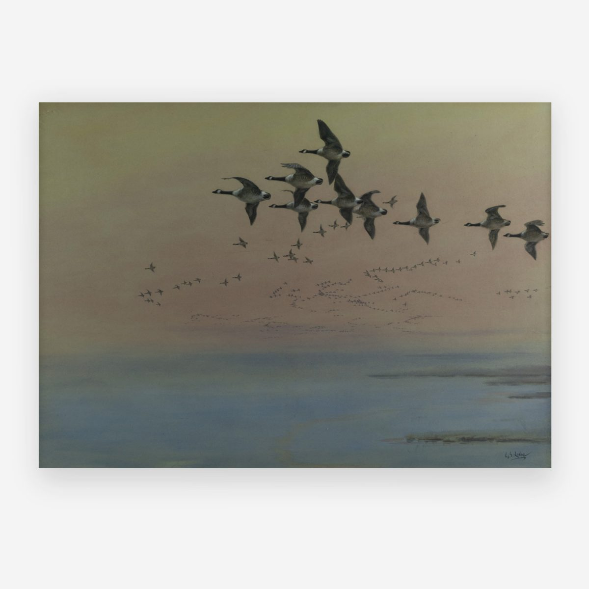 George Edward Lodge - Geese in flight
