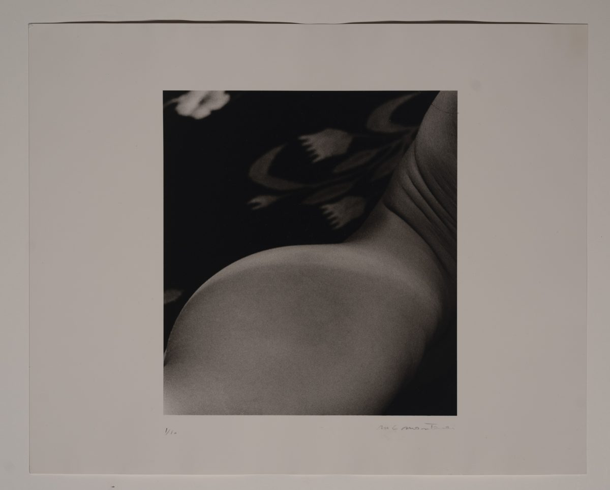 Marie-Claire Montanari  - Untitled (1)