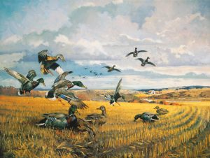 George Browne  - Fields of Gold
