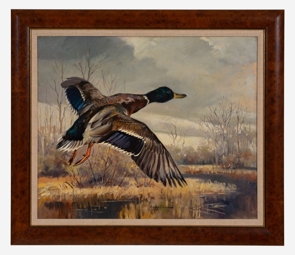 George Browne  - Mallard Going Out