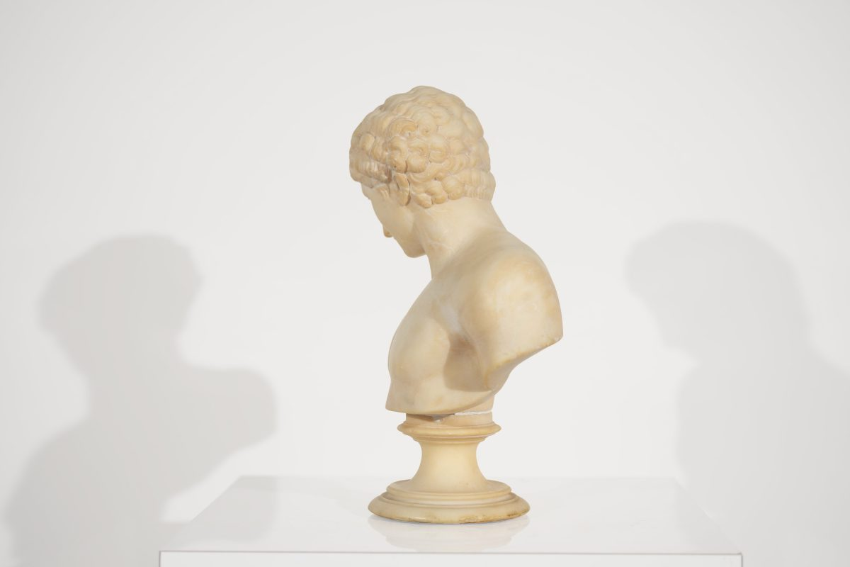 Unknown Artist - Bust of a Greek Youth