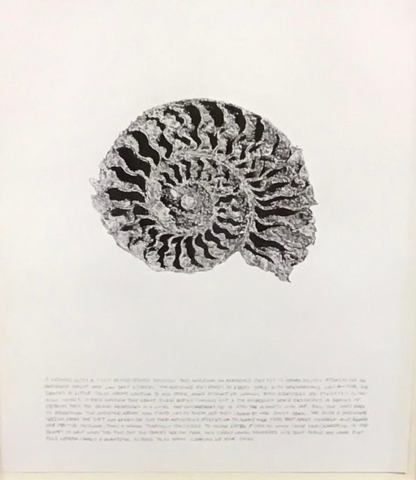 Jim Shaw - Untitled (Nautilus: A woman with a dyed blond butch haircut)