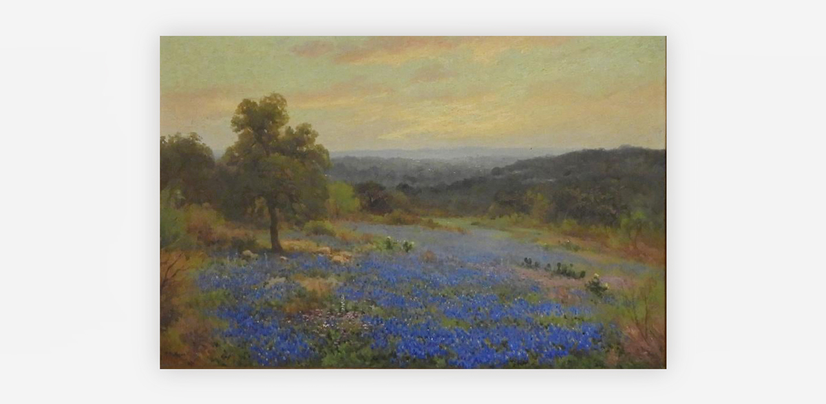 Texas Hills with Bluebonnets